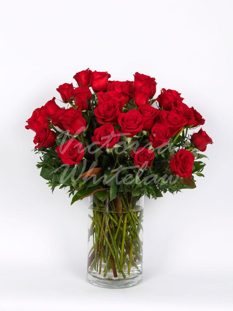 Long Stemmed Roses Red Valentines Day Flowers Melbourne