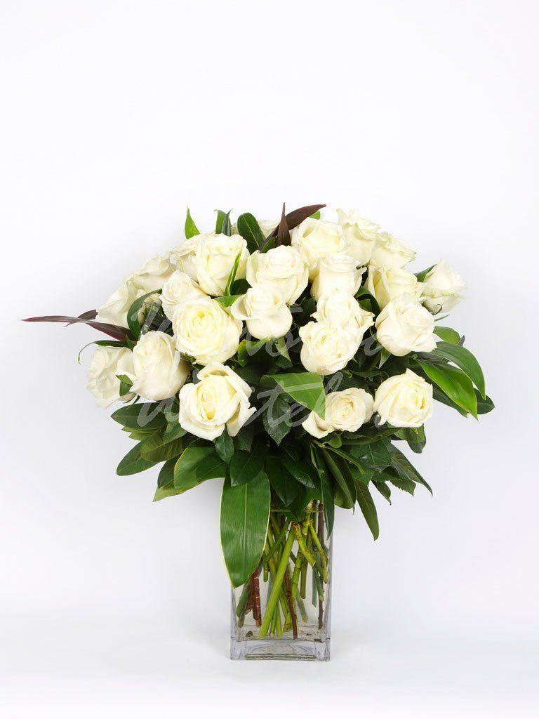 Long Stemmed Roses White Melbourne Florist